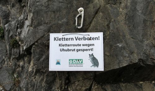 Artikelbild zu Artikel Naturschutzkonzept für den Steinbruch an der Laupendahler Landstraße